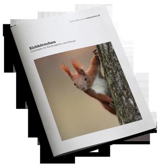 Cover_Eichhoernchen_Heft